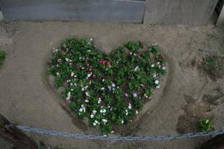 ハートの花壇.JPG